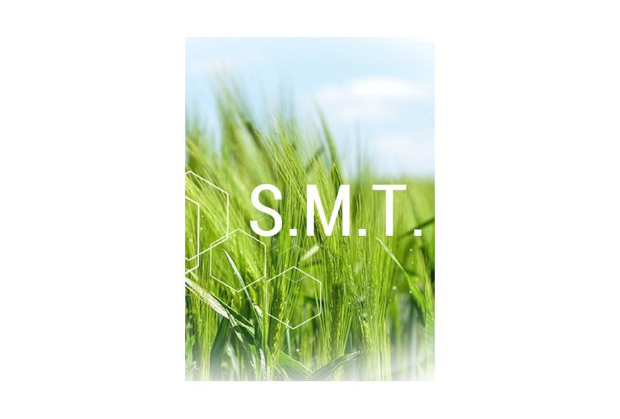 Tecnologia S.M.T.
